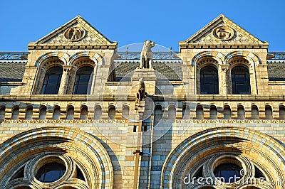 Het nationale Museum van de Geschiedenis: vensters details, Londen