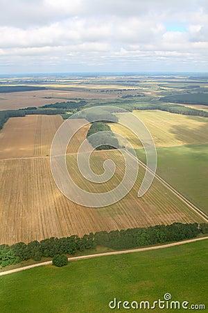 Het oogsten. Lucht beeld.