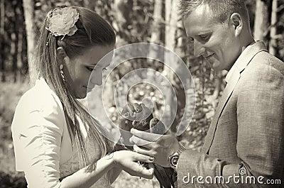 Het paar van de jonggehuwde met duif