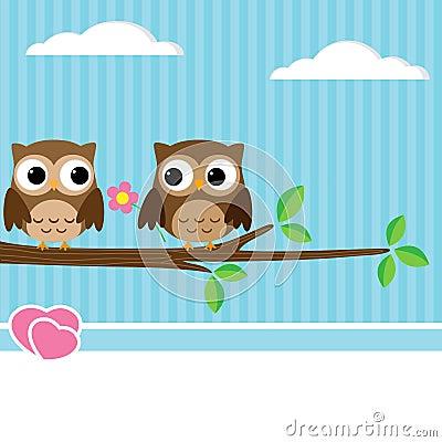Het paar van de uil