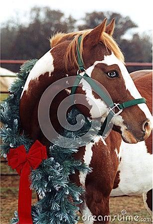 Het Paard van Kerstmis