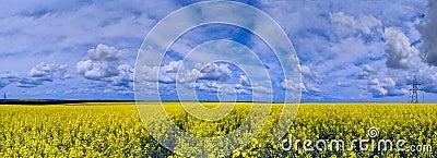 Het panorama van het landschap