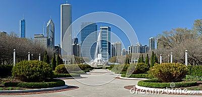 Het Park van de Toelage van Chicago