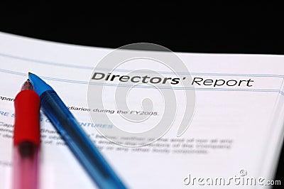 Het Rapport van de directeur