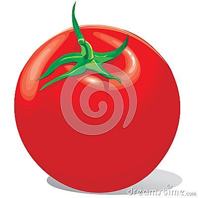Het rood van de tomaat met een groene staart