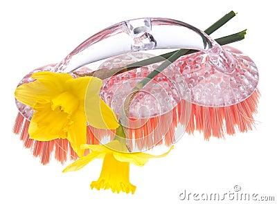 Het Schoonmaken van de lente