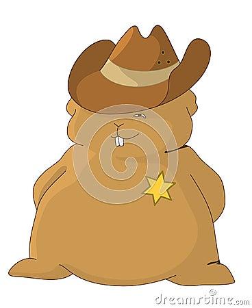 Het sheriff-hoofdkussen