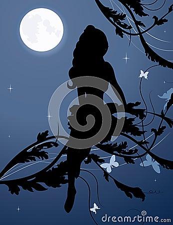 Het silhouet van de fee in nachthemel
