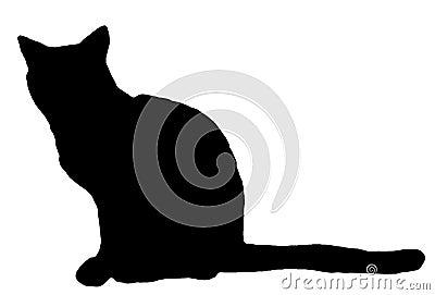Het silhouet van de kat