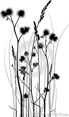 Het silhouet van het gras