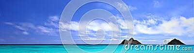 Het strand van het panorama