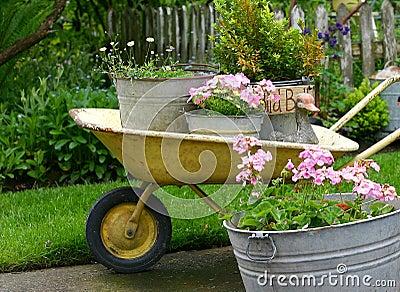 Het tuinieren potten