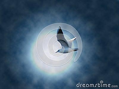 Het vliegen droom