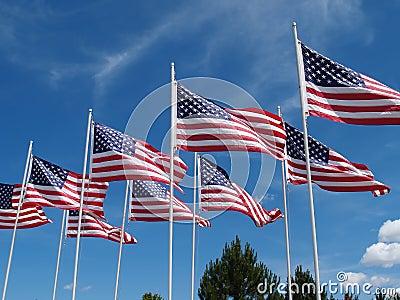 Het Vliegen van vlaggen
