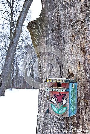 Het vogelzaad van de winter op de geschilderde nestelen-doos