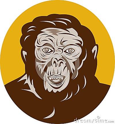 Het voorhistorische hoofd van de holbewonermens