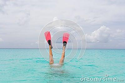 Het vrouwelijke snorkelen