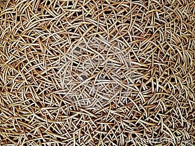 Het weefsel van het bamboe