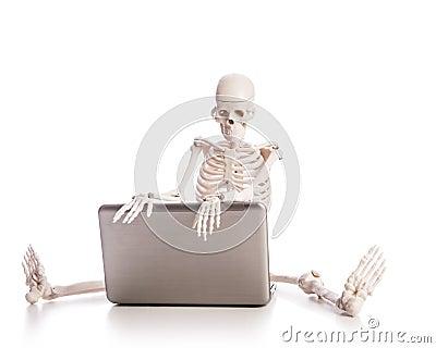 Het werken van het skelet