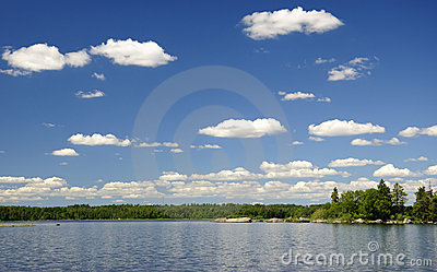Het Zweedse meer van de zomer