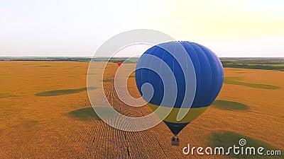 Hete luchtballons die laag over gebieden, loodsen drijven die, onderwijsprogramma opleiden stock video
