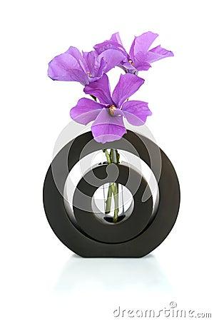Hibiscus in a Black Vase