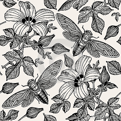 Free Hibiscus Cicadas. Flowers Mallow Insects Fauna. Seamless Textile Background. Drawing Engraving. Freehand Realistic. Royalty Free Stock Photos - 80434878