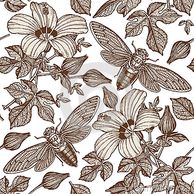 Free Hibiscus Cicadas. Flowers Mallow Insects Fauna. Seamless Textile Background. Drawing Engraving. Freehand Realistic. Stock Photo - 80435320