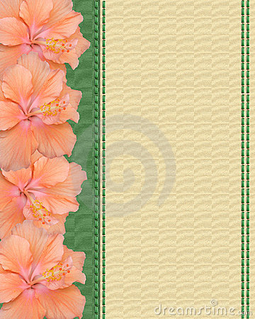 Hibiscus flowers on canvas background