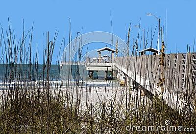Hierba de la duna y embarcadero de la pesca.