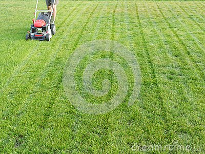 Siega de la hierba