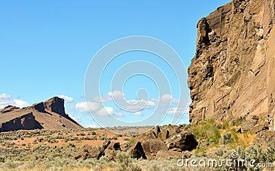 High desert beauty