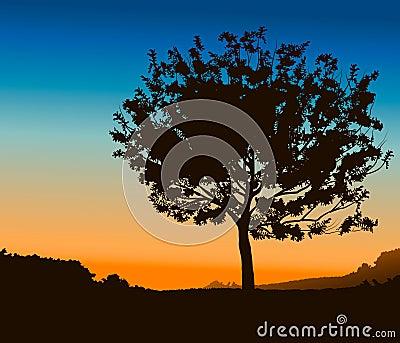 High Detail Tree