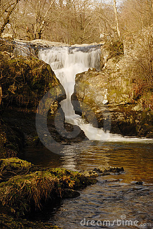 Stock Photo: High Force