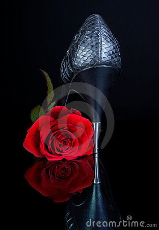 High Heels and rose