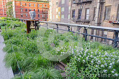 High Line Park, New York