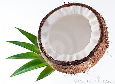 High-quality photos of coconuts
