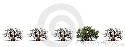High resolution 3D conceptual baobab trees row