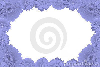 High resolution gerbera frame