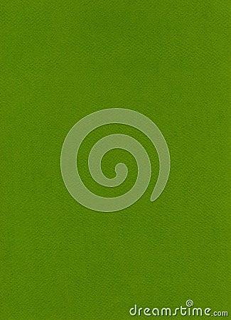 Fiber Paper Texture - Apple Green