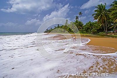 High surf, puerto rico