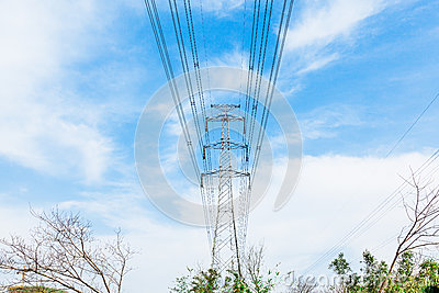 High voltage transmission tower in the wild