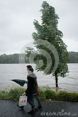 High water on the Danube river in Slovakia Editorial Image