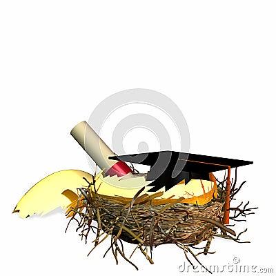 Higher Education Nest Egg