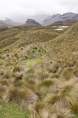 Highlands of Ecuador