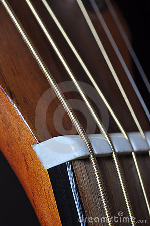 Highly Strung, Acoustic Guitar Detail Macro