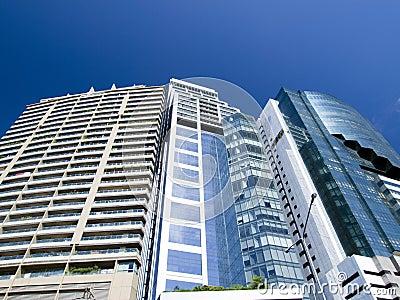 Highrise modern building