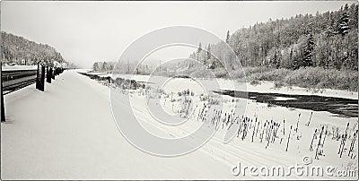 Highway 17 Winter Storm