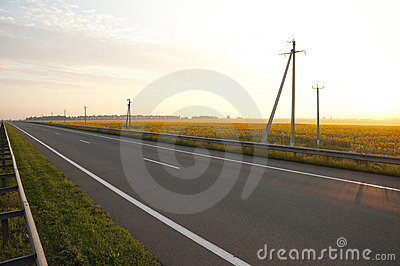 Highways along a field of sunflowers