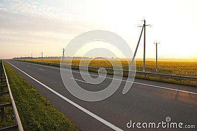 Highways along a field of sunflowers